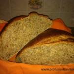 Pane rustico integrale con pasta madre2
