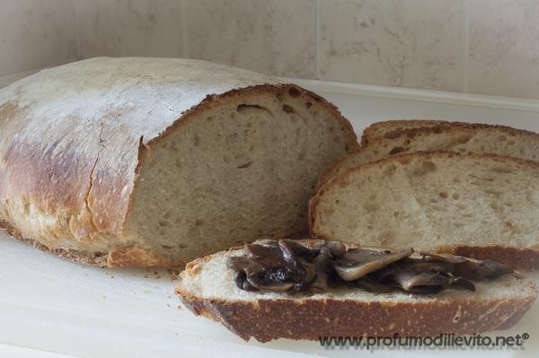 bimby pane per tutti i giorni