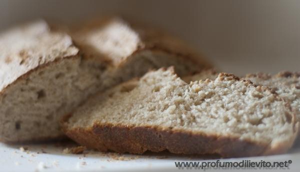 bimby pane di semola e farro con pasta madre