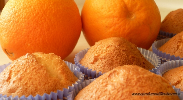 bimby muffin all'arancia